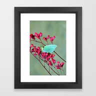Framed Art Print featuring Butterfly by Lo Coco Agostino