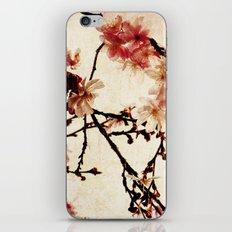 Vintage Cherry iPhone & iPod Skin