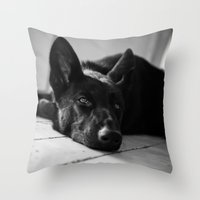 Dog German Shepherd  Throw Pillow