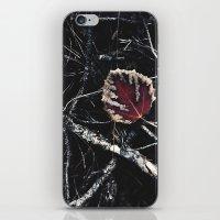Dark Fall iPhone & iPod Skin