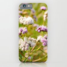Brazilian flower Slim Case iPhone 6s