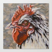 Speckled Rooster Canvas Print