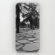 Stonewalk iPhone & iPod Skin