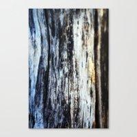 Damp On Wood Canvas Print