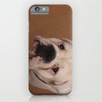 iPhone & iPod Case featuring My dog Konstantin by Rudolf Brancovsky
