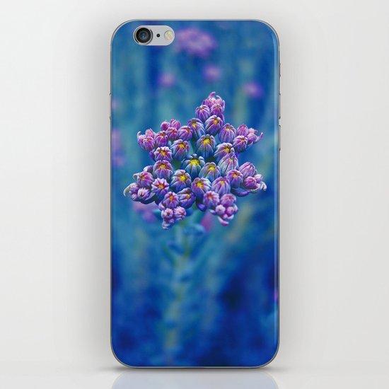 wild herb I iPhone & iPod Skin