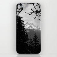 Mountain View iPhone & iPod Skin