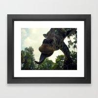 Giraffes Are Silly. Framed Art Print
