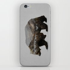 The Kodiak Brown Bear iPhone & iPod Skin
