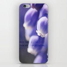 Mascari iPhone & iPod Skin
