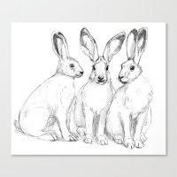 Three Hares sk131 Canvas Print