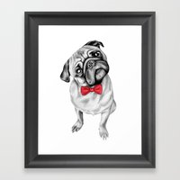 Percy Pug Framed Art Print