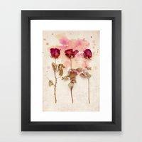Dead Roses Framed Art Print
