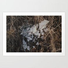 SHATTERED - nature photography Art Print