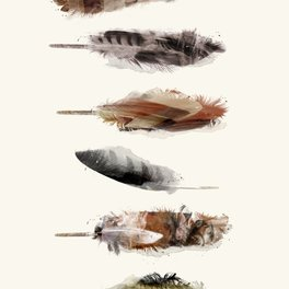 Art Print - Free Fall Feathers - bri.buckley
