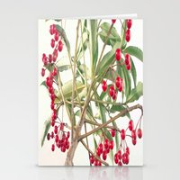 Christmas Berry Stationery Cards