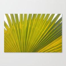 bright green flora Canvas Print