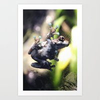 Sticky Frog Art Print