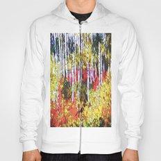 Title: Glorious Colors - digital Silk Screen Hoody