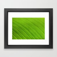 Green 8869 Framed Art Print