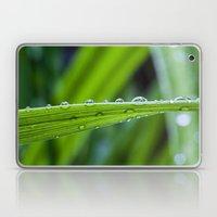 Spring Rains Laptop & iPad Skin
