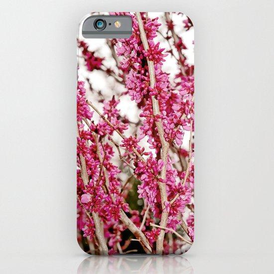 Placid iPhone & iPod Case