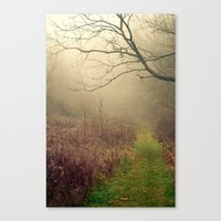 Mindfulness In Nature Canvas Print