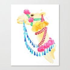 Marrakesh Camel Canvas Print