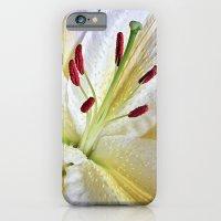 Lily Macro iPhone 6 Slim Case