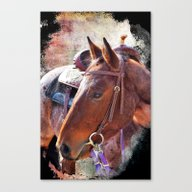 The Roan Horse  Canvas Print