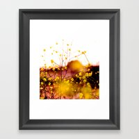 Flowers At Sunset Framed Art Print