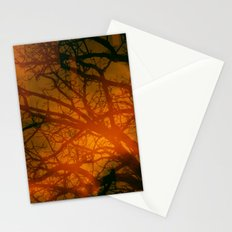 Trees In The Golden fog sunset Stationery Cards