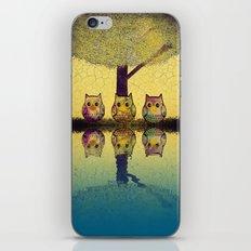 owl-892 iPhone & iPod Skin