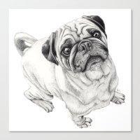Seymour the Pug Canvas Print