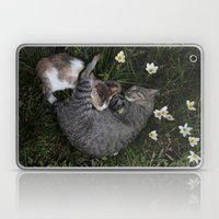 Sleep [A CAT AND A KITTE… Laptop & iPad Skin