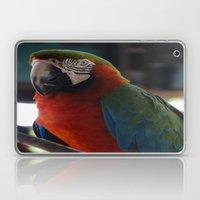 Parrot Talk Laptop & iPad Skin