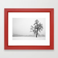 Solitary Tree in Winter Framed Art Print