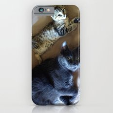 Kitty see kitty do... iPhone 6 Slim Case