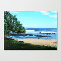 Sunshine coast beach Canvas Print