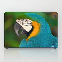 Polly Wanna Cracker?  iPad Case