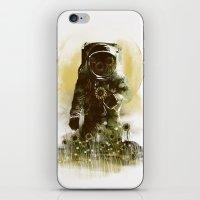 Sunflower Field iPhone & iPod Skin