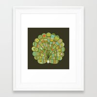 Peacock At Dawn Framed Art Print