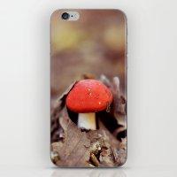 Red Cap iPhone & iPod Skin