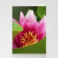 Water Lily IX Stationery Cards