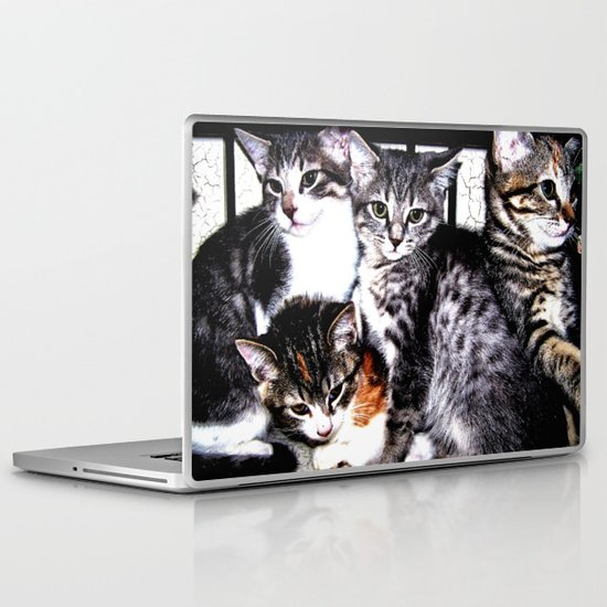 Adorable Kittens Laptop & iPad Skin