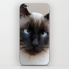 Are you looking at me? iPhone & iPod Skin