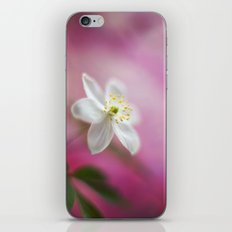 Tender Light iPhone & iPod Skin