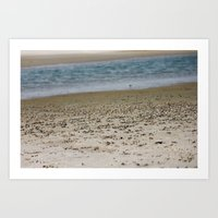 Crab Beach Art Print