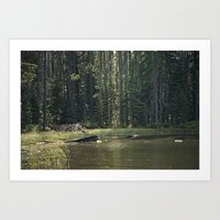 Mountain Pond Art Print