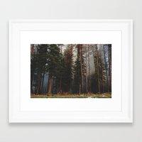 Oregon Forest Control Fire Framed Art Print